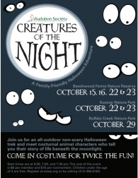 Creatures of the Night at Buffalo Creek Park